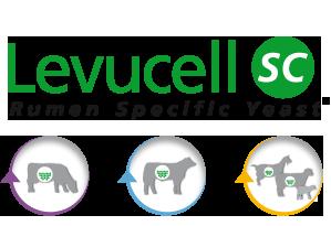 Levucell®SC Rumen Specific Yeast